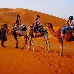 With #LuxuryTripMorocco‎ , you will immerse yourself in the history, people and culture of contemporary Morocco. For more info visit @ http://www.camelsafaries.net/