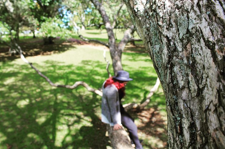 Climbing trees in Cornwall Park, Auckland, NZ (2016)