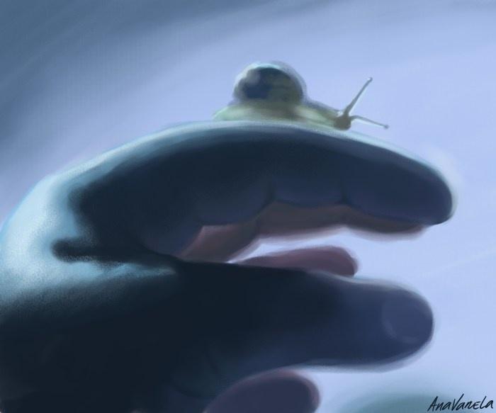little snail illustration by Ana Varela @ http://www.behance.net/anavarela