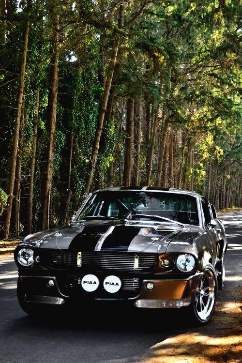 italian-luxury: Shelby GT 500