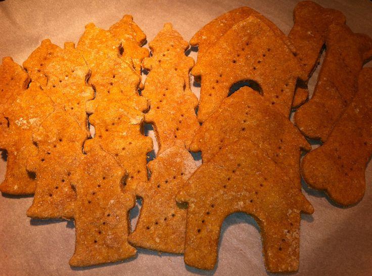 Free Pumpkin Dog Treat Recipe | Easy Dog Treat Recipes That Anyone Can Make |