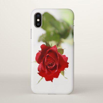 tolles die magie der bulgarischen rose bewährte bild der caaccddafcdcef