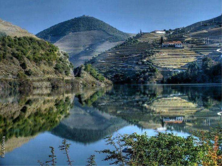 Qta.do Pego Valença do Douro
