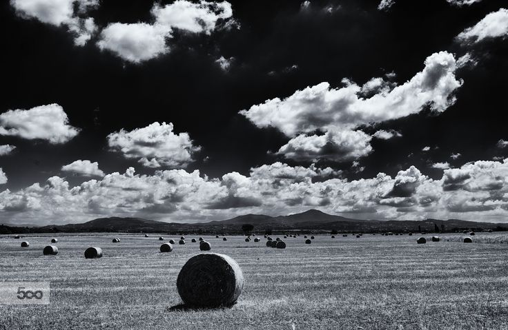 heat field and hay bales by marco branchi on 500px