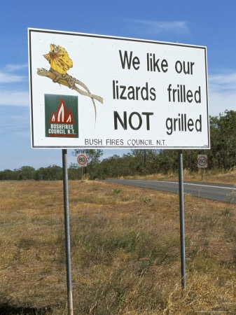 We like our lizards fried not grilled...Bush Fire Council