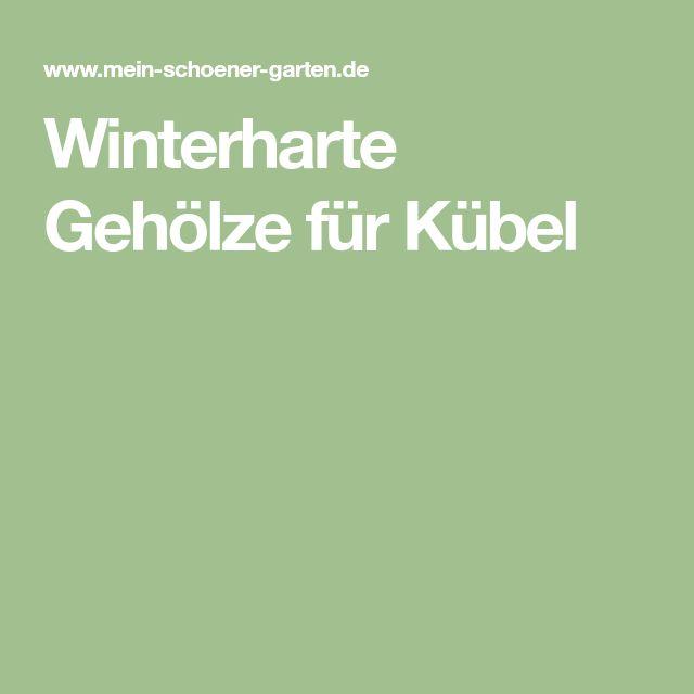 Winterharte Gehölze für Kübel