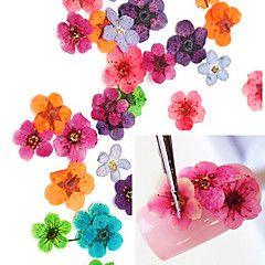36pcs Farverige Tørret Peach Blossom Nail Art Dekorationer – DKK kr. 30