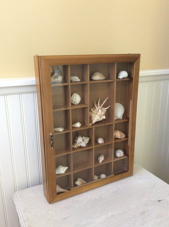 Vintage Wood Curio Case With Front Hinged Glass Door Divided Into 22 Openings Of 20 Small And 2 Large Of Various Si Wood Shadow Box Vintage Wood Staining Wood
