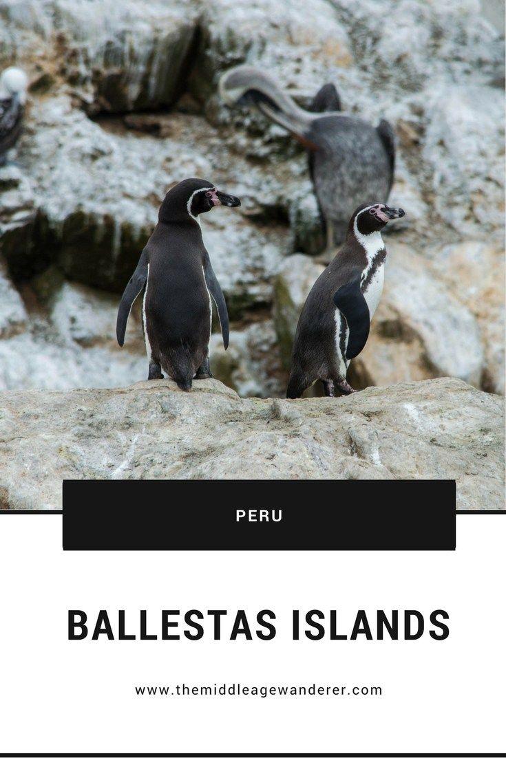 Ballestas Islands, Peru | The Middle Age Wanderer