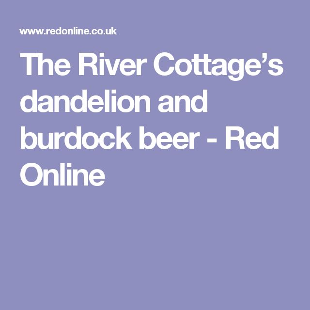 The River Cottage's dandelion and burdock beer - Red Online