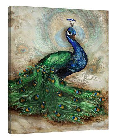 This Peacock Wrapped Canvas is perfect! #zulilyfinds