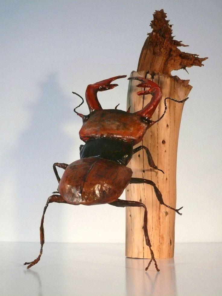 Lucane cerf volant - Martha Arango l'art au naturel