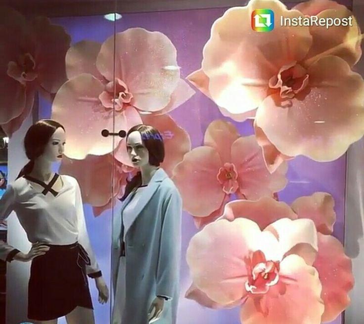 backdrop flowers