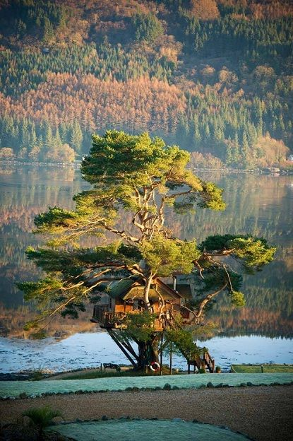 tree house on Loch Goil, near Glasgow, Scotland. Part of a lodge resort...