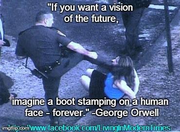 Rhode Island Police Brutality Woman