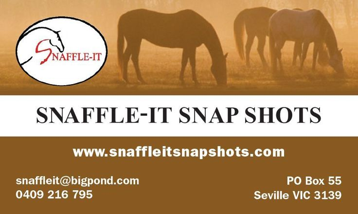 Snaffle-it Horse Supplies - Snaffle-it Snap Shots, Prints & Digital Images (http://www.snaffleithorsesupplies.com/snaffle-it-snap-shots-1/)