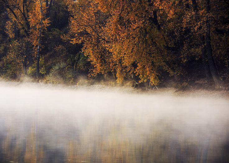 Boise River Autumn Foggy Morning Photograph