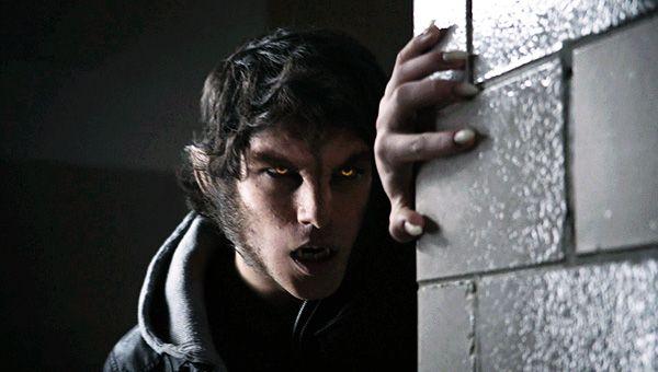 Werewolf - Teen Wolf Wiki