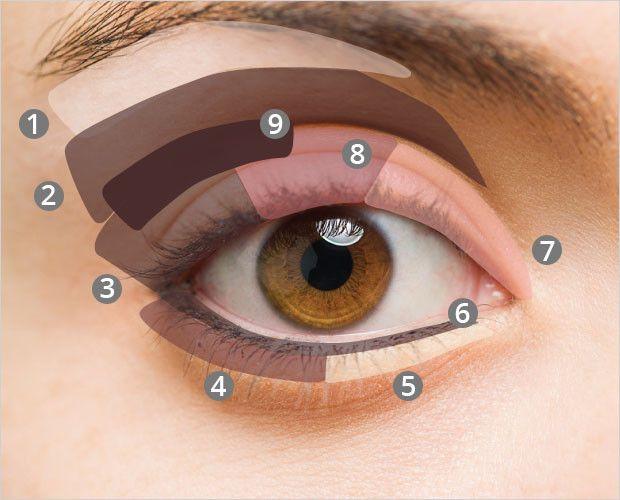 Makeup Guide: Applying Eyeshadow