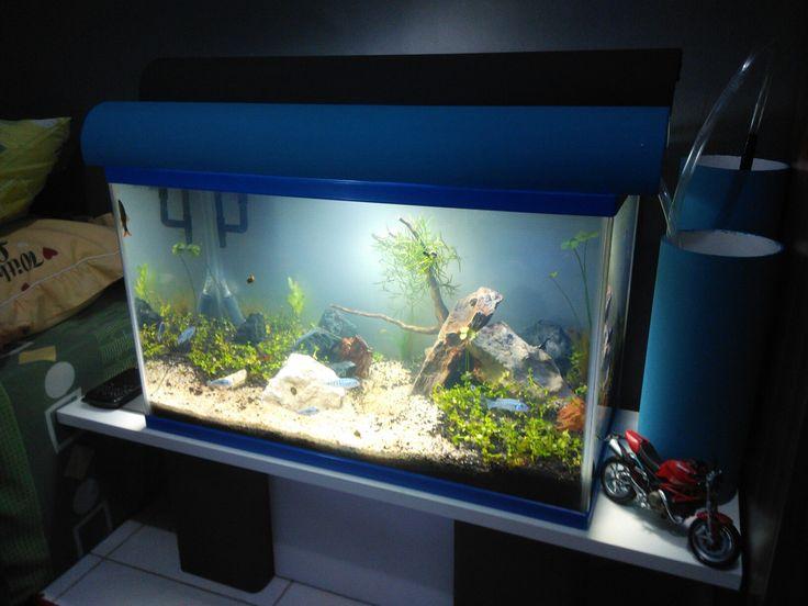Tongok home made diy design aquascape wood by galih setiawan