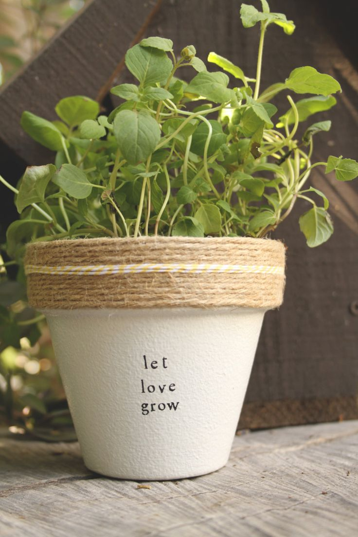 Let Love Grow by PlantPuns on Etsy