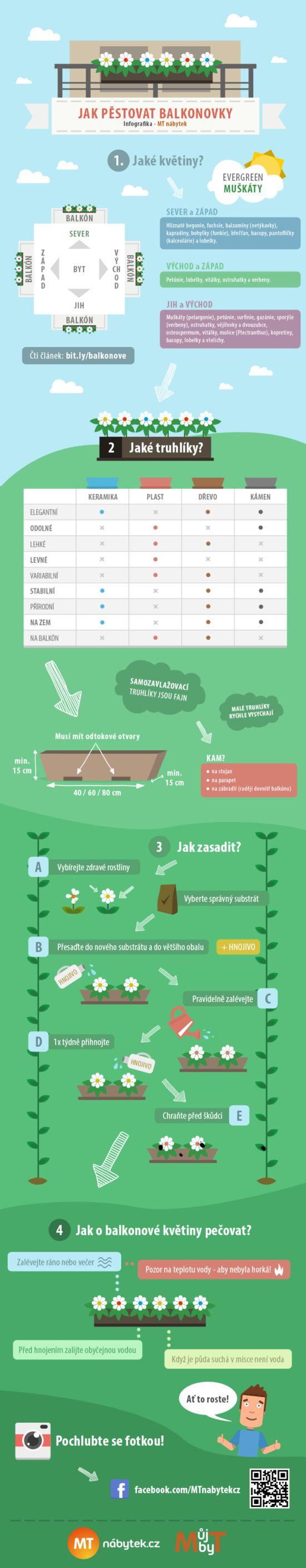 Infografika: Jak na pěstování balkonových rostlin?