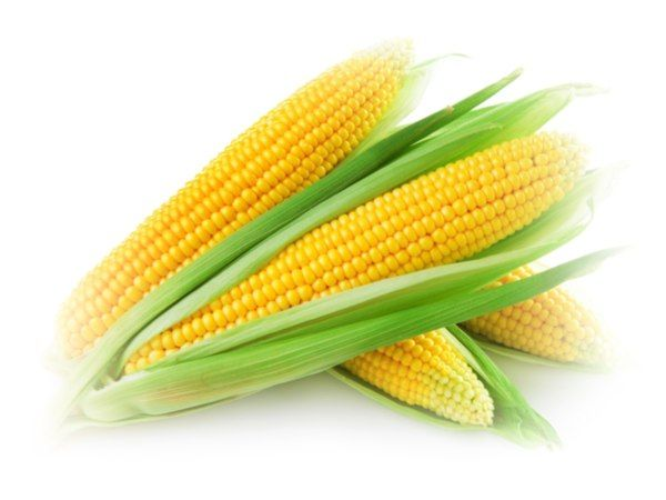 This is the benefit of sweet corn can provide body health, one for lower cholesterol and boost the immune system