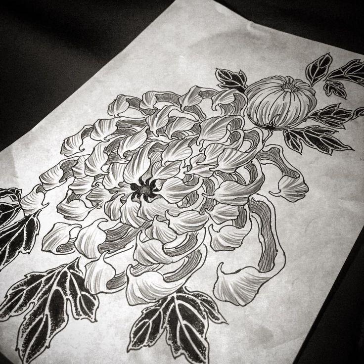 Sketch. Kiku. #yuuztattoo on instragram #irezumi #tattoo