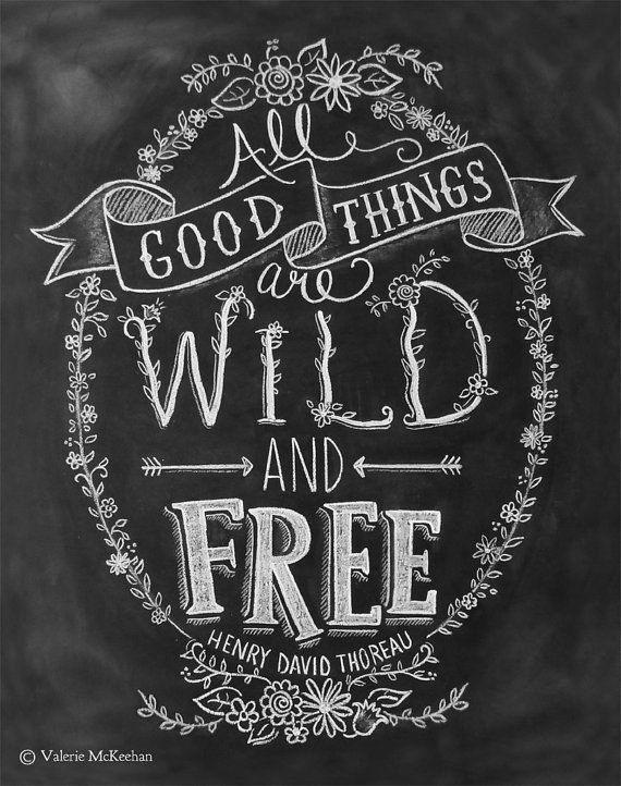 All Good Things Are Wild & Free - Chalkboard Art Print - Hand Lettering - 11x14 Print