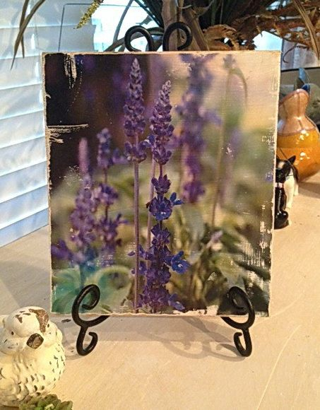 17 Best Images About Photos On Wood Coasters Chalkboards