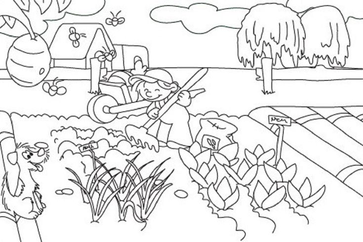 vegetable garden coloring pages printable | Food ...