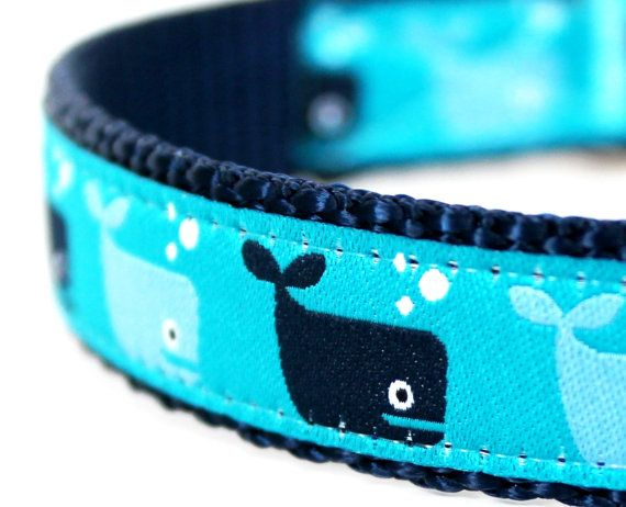Save the Whales Dog Collar / Adjustable Ribbon Dog Collar