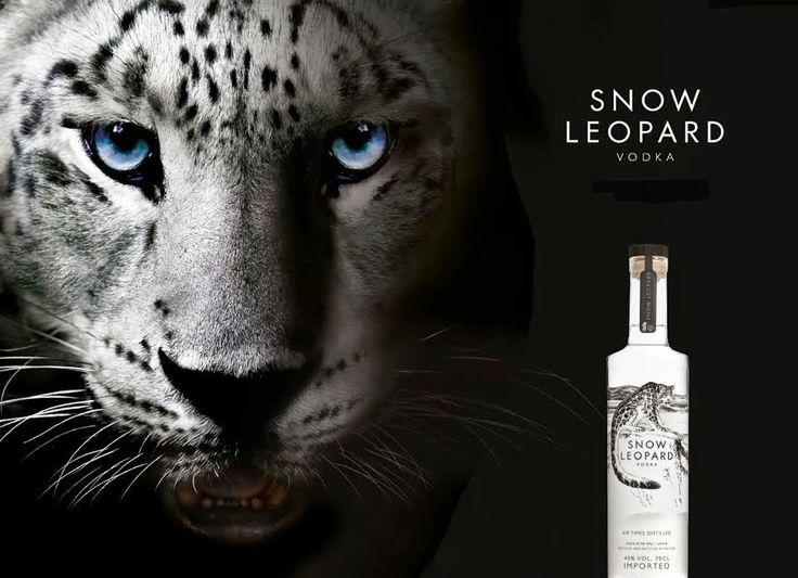 Given To Distracting Others: Snow Leopard Vodka Review and Giveaway