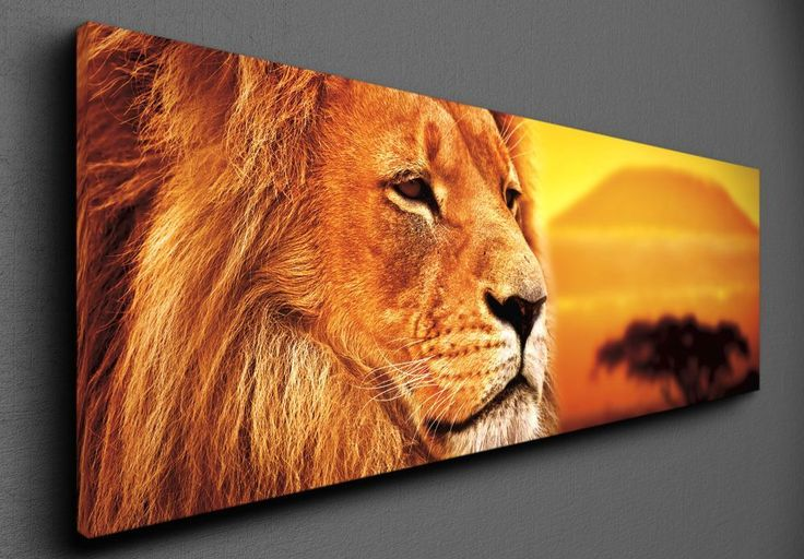 Lion selfie - Canvas
