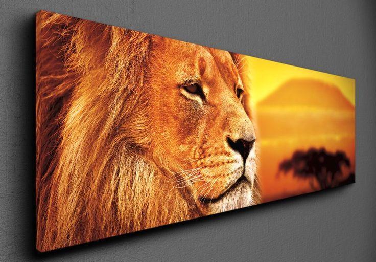 Lion selfie - Canvas