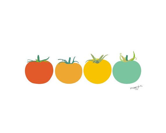 I love her signature next to these perfect tomatoes! @Studio_ArtOcrat  @Etsy Food art print  Tomatoes  illustration 8x10 wall art by PragyaK, $20.00