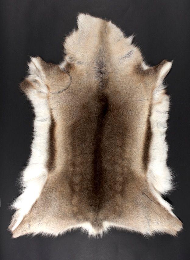 Reinsdyr Peau de renne naturelle, rennes élevés en plein air, le tannage de la peau est réalisé dans le respect de l'environnement. Race présente en Laponie, les bêtes se déplaçant de la Norvège à la Finlande, en passant par la Suède. Chaque peau présente une palette de nuances très harmonieuses, allant du blanc cassé au gris perlé, en passant par …