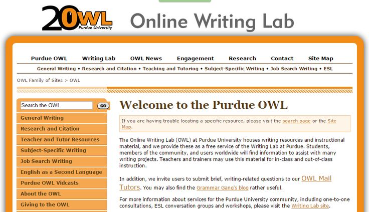 essay and owl