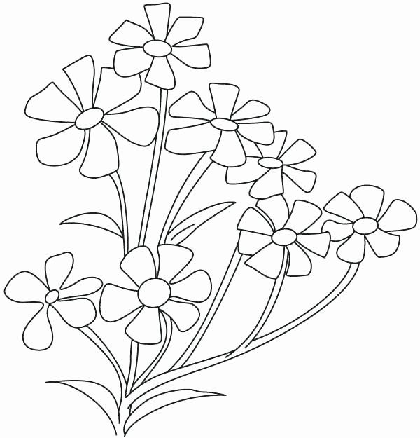 Small Flowers Coloring Pages New Periwinkle Flower Drawing At Getdrawings Flower Coloring Pages Flower Drawing Periwinkle Flowers