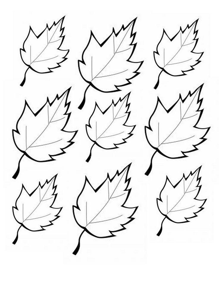Printable Leaves Printables Pinterest