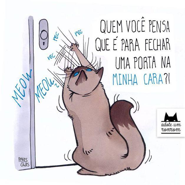 """Gatos são intrometidos, um pouco folgados, mas sempre adoráveis. Quem tem um em casa ou no apartamento sabe bem disso. Quem não tem, pode sentir o gostinho com as ilustrações da designer Manu Cunha para o livro """"Como Diria Meu Gato""""."""