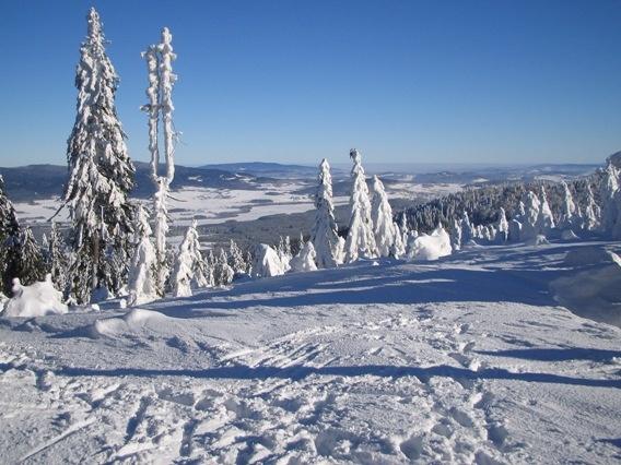 Böhmerwald im Winter