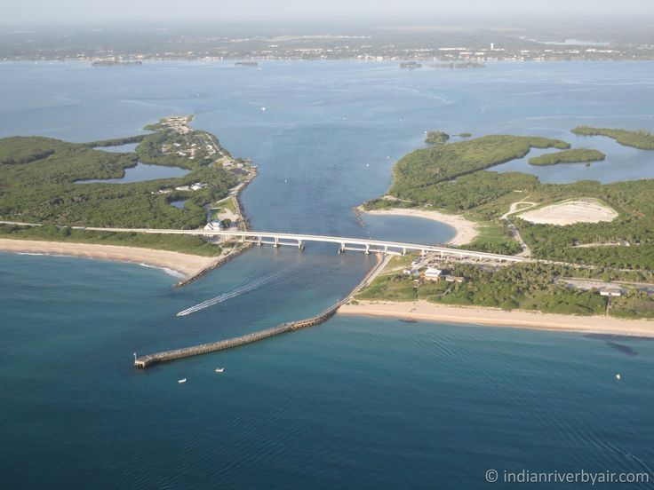 34 best images about florida fishing on pinterest for Indian river inlet fishing tips