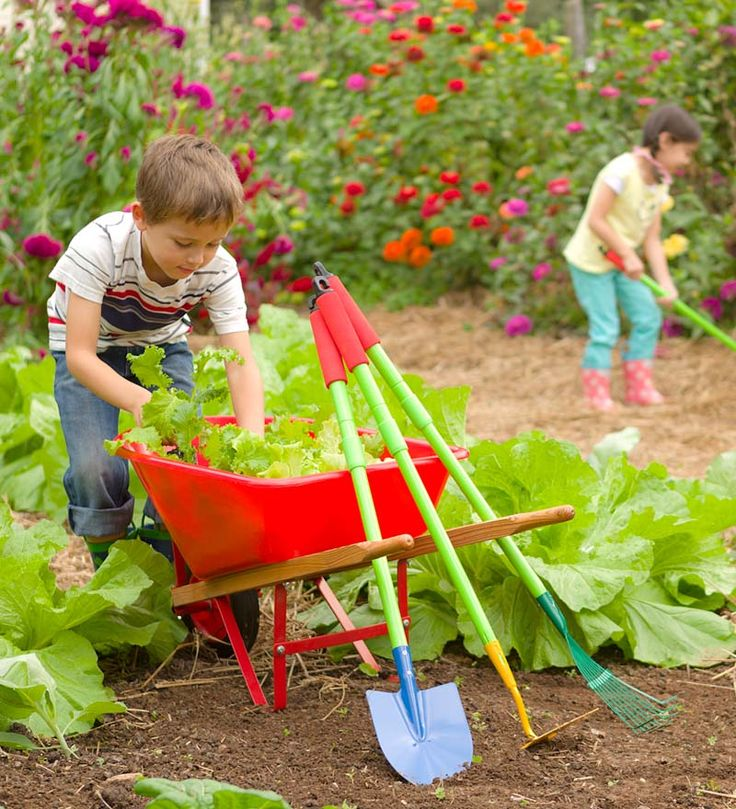 Grow-With-Me Garden Tool Set and Child's Wheelbarrow Special