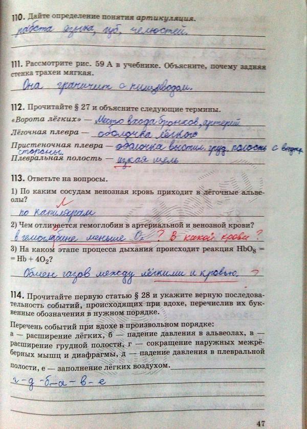 Электронный учебник голицынский6 издания