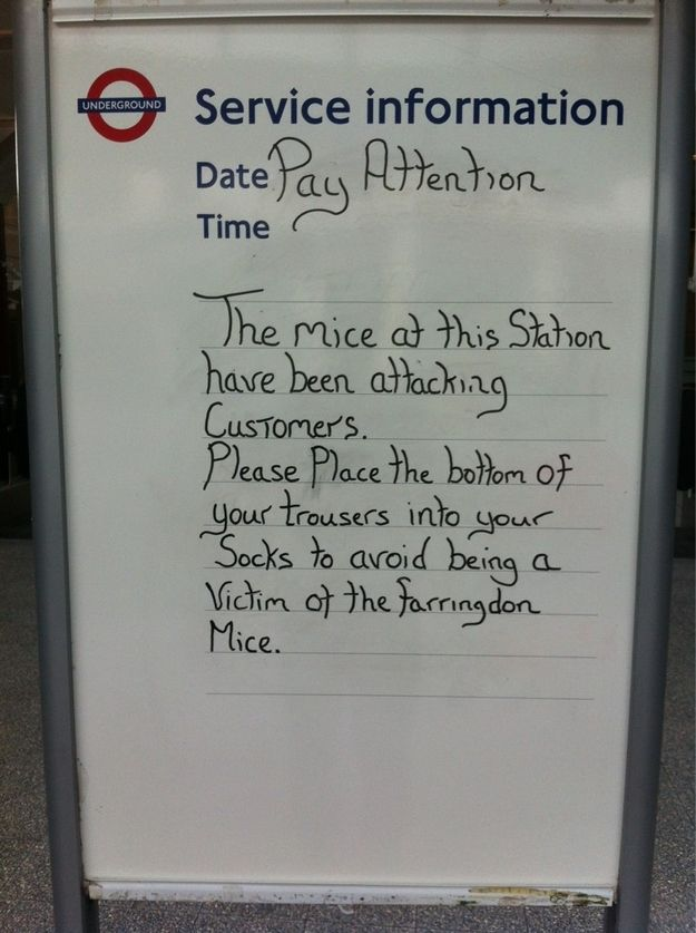 22 Signs That Your Train Station Is