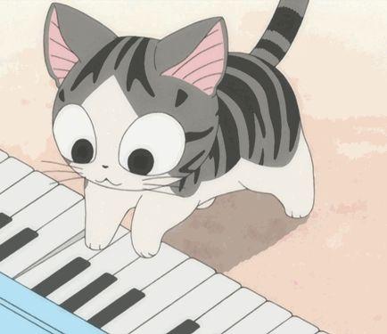 omg piano kitty. CUTE OVERLOAD