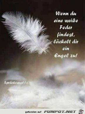 Sprüche Engel Tod