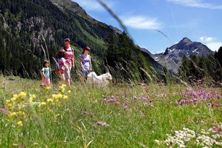 Passeggiando tra i fiori in Val Moena. www.visitfiemme.it