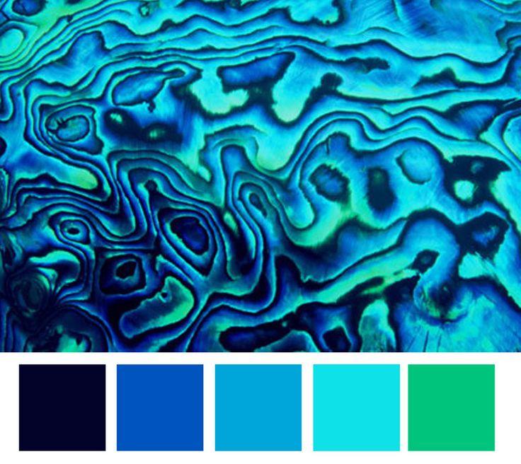 Paua shell palette